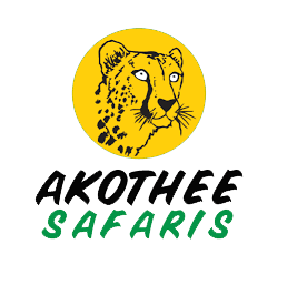 Akothee Safaris